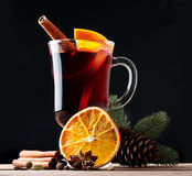 Mulled wine, blue pine tree branch and spices Stock Photos