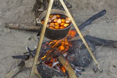Mulled wine with fruit in a large metal cauldron cooked on a campfire on gray sand with dry firewood. A mulled wine with fruit in a large metal cauldron cooked royalty free stock photography
