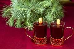 Mulled Wine med evergreen Royaltyfria Bilder