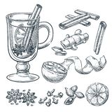 Mulled wine recipe, vector sketch illustration. Set of isolated hand drawn spices, ingredients. stock illustration