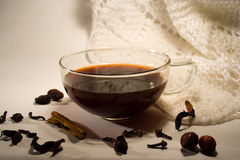 Mulled wine with spices Royalty Free Stock Photo