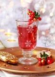 Mulled wineexponeringsglas med cranberryen Royaltyfri Bild