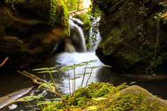 Mullerthal au Luxembourg Photographie stock