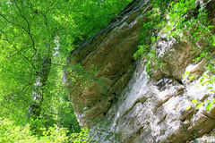 Mullerthal Trail, Schiessentumpel Waterfall, Luxembourg Stock Photography