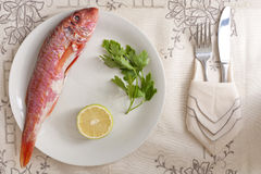 Mullet with Lemon and Parsley Stock Image