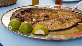 Mullet - open roasted fish lemon dish - food of west Greece called Royalty Free Stock Photo