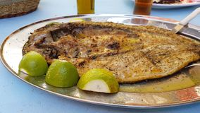 Mullet - open roasted fish lemon dish - food of west Greece Royalty Free Stock Images