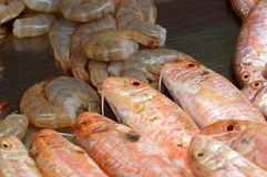 Mullet, perch and shrimps stock photo