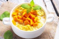 Mullet porridge Royalty Free Stock Images