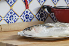 Mullet striped mullet contains omega-3 acids, vitamins and minerals. Mullet lying on plate ready for cooking. Stock Images