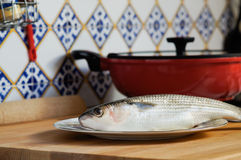 Mullet striped mullet contains omega-3 acids, vitamins and minerals. Mullet lying on plate ready for cooking. Mullet striped mullet contains omega-3 acids Stock Images