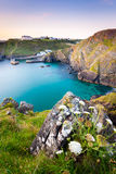 Mullion Cove Cornwall Stock Image
