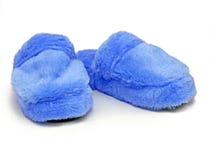 Mulo blu Fotografia Stock