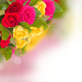 Multcolored roses bouquet Royalty Free Stock Image