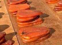 Multefiskarfiskrom Royaltyfri Fotografi