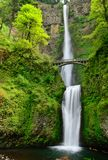 Multhnomah-falls. USA. Oregon state. Stock Image
