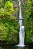 Multhnomah-falls. USA. Oregon state. Stock Image