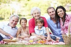 Multi семья поколения наслаждаясь пикником совместно Стоковые Изображения RF