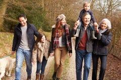 Multi семья поколения на прогулке сельской местности стоковое изображение rf