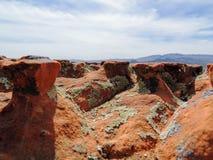 Multi цвет и типы Crustose лишайник или водоросли на валуне песчаника пустыни в югозападной Юте, США около St. George стоковое изображение rf