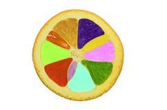 Multi arancia di colore Fotografie Stock Libere da Diritti