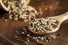 Multi arroz seco orgânico da grão imagens de stock