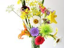 Multi bloemen Royalty-vrije Stock Afbeeldingen