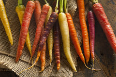 Multi carote crude colorate variopinte Fotografie Stock Libere da Diritti
