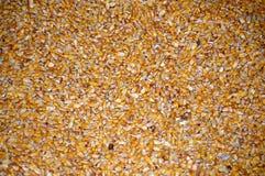 Multi cereale colorato immagini stock libere da diritti