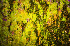 Multi color bark texture with abstract draws Stock Images