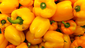 Multi color bell peppers. Royalty Free Stock Photography