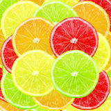 Multi color different citrus slices as background Stock Images