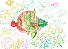 Multi-color fish fish between algae. Child's drawing - multi-color fish fish between algae by felt-tip pen Stock Photography