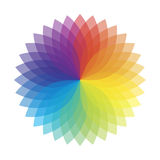 Multi color flower. Vector illustration Stock Image