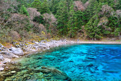Multi color lake, Jiuzhaigou. Multi color lake of Jiuzhaigou Valley Scenic and Historic Interest Area, Sichuan, China Stock Images