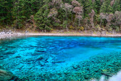 Multi color lake, Jiuzhaigou. Multi color lake of Jiuzhaigou Valley Scenic and Historic Interest Area, Sichuan, China Stock Photos