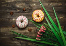 Multi-colored assortment of donuts. With sprinkles and frosting on dark wooden background with flowers Stock Photography