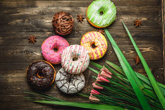 Multi-colored assortment of donuts. With sprinkles and frosting on dark wooden background with flowers Stock Photos
