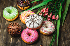 Multi-colored assortment of donuts. With sprinkles and frosting on dark wooden background with flowers Stock Images