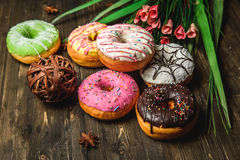 Multi-colored assortment of donuts. With sprinkles and frosting on dark wooden background with flowers Stock Image