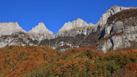 Bright colored forest and peaks of the Churfirsten Range. Autumn Royalty Free Stock Image