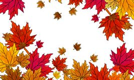 Multi-colored autumn leaves on a white background. Vector art illustration royalty free illustration