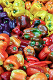 Multi-colored Bell Peppers Stock Photo