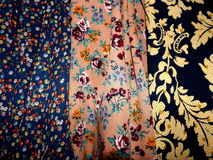 Multi-colored bloem drie Royalty-vrije Stock Foto's