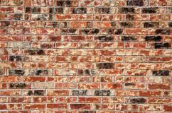 Multi-colored brick wall Royalty Free Stock Images