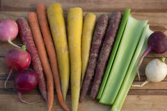 Multi-Colored Carrots with Celery and Radishes. Organic, purple, orange, and yellow carrots with celery and radishes on a wooden cutting board royalty free stock images