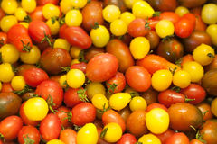 Multi-colored cherry tomatoes Stock Image