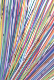 Multi Colored Computer Network Cables Royalty Free Stock Images