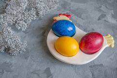 Multi-colored Easter eggs lie on a white plate in the shape of a chicken next to paint for coloring royalty free stock photos