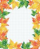 Multi-colored esdoornbladeren Royalty-vrije Stock Afbeeldingen
